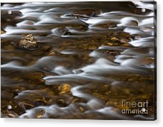 Mountain Stream 2008 Acrylic Print