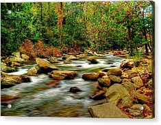 Mountain Stream Acrylic Print by Ed Roberts
