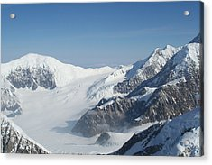 Mt Mckinley Acrylic Print by Dick Willis