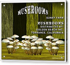 Mushroom Farm Acrylic Print by Marvin Blaine