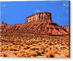 Acrylic Print featuring the painting National Navajo Tribal Park by Bob and Nadine Johnston