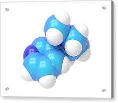 Nicotine Molecule Acrylic Print by Indigo Molecular Images