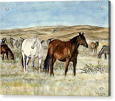 Nine Horses Acrylic Print by Melly Terpening