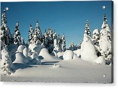 North America, Canada, Nova Scotia Acrylic Print