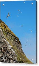 Norway Svalbard Barentsoya Acrylic Print by Inger Hogstrom