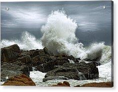 Tidal Leap Acrylic Print