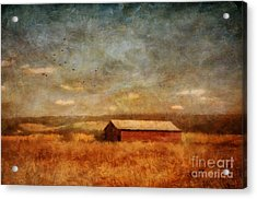 October Afternoon Acrylic Print by Lois Bryan
