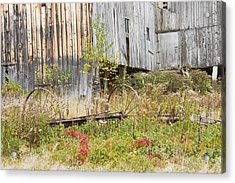 Old Barn In Fall Maine Acrylic Print by Keith Webber Jr