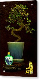 Old Man And The Tree Acrylic Print by Elf Evans