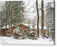 Acrylic Print featuring the photograph One Snowy Day  by Ann Murphy