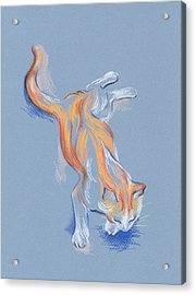 Acrylic Print featuring the pastel Orange And White Tabby Cat by MM Anderson