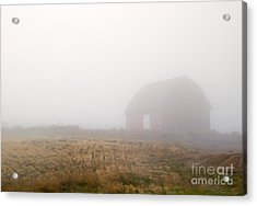 Out Of The Fog Acrylic Print by Mike  Dawson