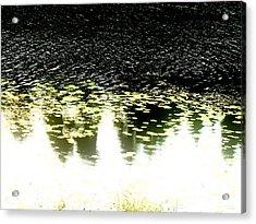 Peek Acrylic Print by Pauli Hyvonen