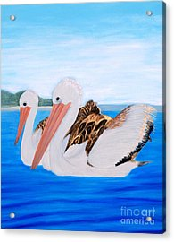Pelicans.   Inspirations Collection. Acrylic Print