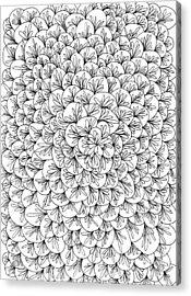 Petals Acrylic Print by Yvette Pichette