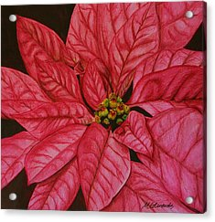Poinsettia Acrylic Print by Marna Edwards Flavell