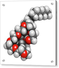 Polidocanol Sclerosant Drug Molecule Acrylic Print by Molekuul