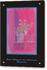 Poster - Pink Geranium Acrylic Print by Marcia Meade
