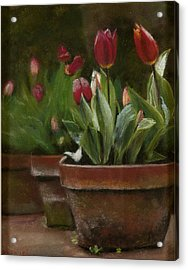 Acrylic Print featuring the pastel Potted Tulips by Cindy Plutnicki