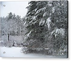 Powdered Sugar Acrylic Print by Eunice Miller
