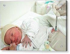 Preterm Birth Baby Acrylic Print