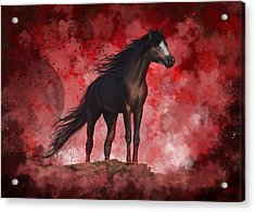 Protector Acrylic Print by Kate Black