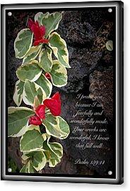 Psalm 139 14 Acrylic Print