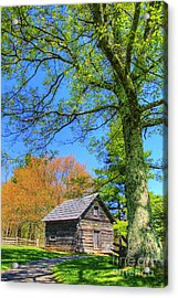 Puckett's Cabin Acrylic Print by Paul Johnson