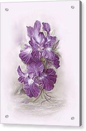 Purple Iris Acrylic Print by Bonnie Willis