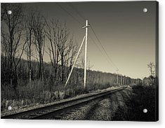 Railroad Track Passing Acrylic Print by Panoramic Images
