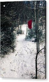 Red Glove Acrylic Print by Joana Kruse