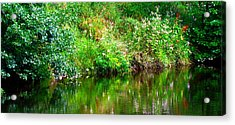 Riverside Reflections Acrylic Print
