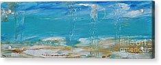 Reflections Acrylic Print by Diana Bursztein