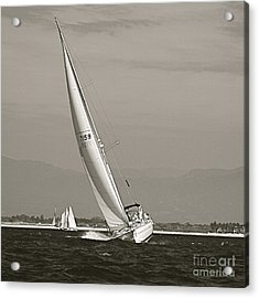 Acrylic Print featuring the photograph Regatta by Nicola Fiscarelli