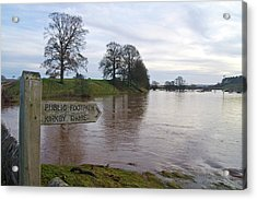 River Eden Flooding. Acrylic Print by Mark Williamson