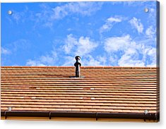 Roof Tiles Acrylic Print by Tom Gowanlock