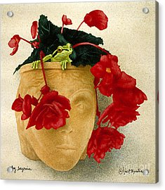 Ruby Begonia... Acrylic Print by Will Bullas