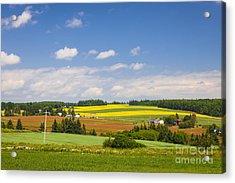 Rural Landscape Acrylic Print