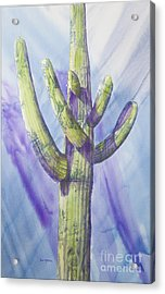 Saguaro In Winter Acrylic Print