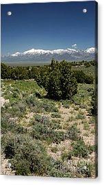 614p Schell Creek Range Nv Acrylic Print