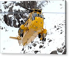 Seaking Helicopter Acrylic Print by Paul Fearn