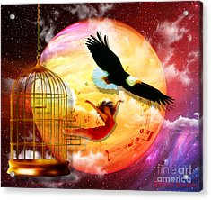 Set Free Acrylic Print by Dolores Develde