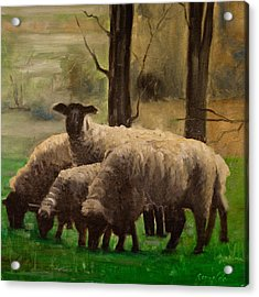 Acrylic Print featuring the painting Sheep Family by John Reynolds