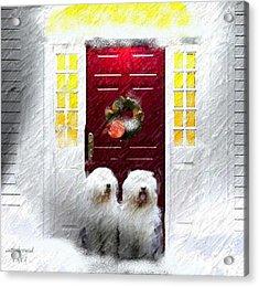 2 Sheepdogs Acrylic Print