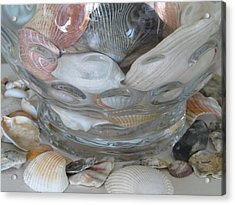 Shells In Bubble Bowl 2 Acrylic Print