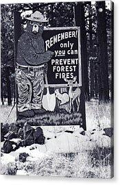 Acrylic Print featuring the photograph Smokey The Bear by Juls Adams
