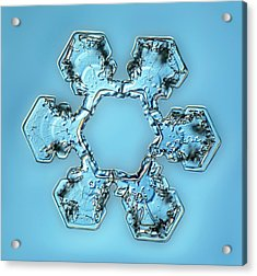 Snowflake Crystal Acrylic Print by Gerd Guenther