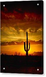Southwestern Style Sunset  Acrylic Print by Saija  Lehtonen