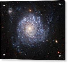 Spiral Galaxy Acrylic Print by Nasa