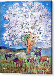 Spring And Horses 1 Acrylic Print